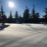 Scenic views on top of Mt. Hood